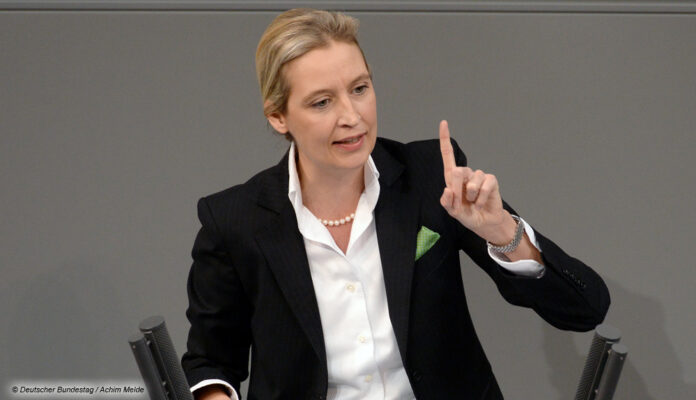 Alice Weidel, AfD