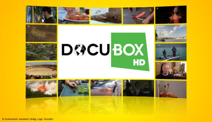 Logo: DocuBox