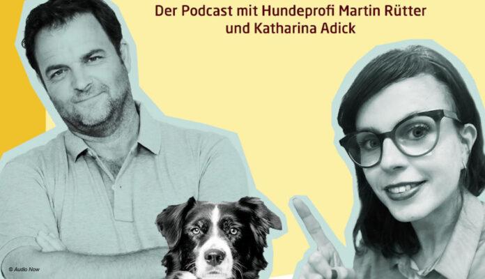 Podcast Tierisch menschlich